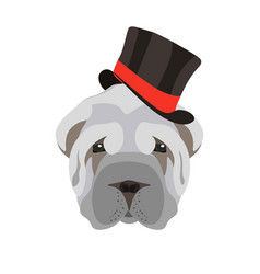 sharpei dog head with black hat isolated on white vector image vector image