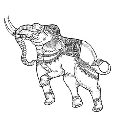 White elephanttraditional thai art vector