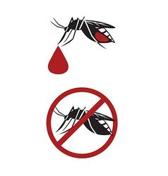 Dengue vector