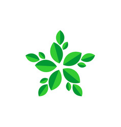flower leaf vector image