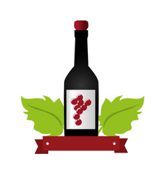 Wine bottle with cork and grapes leaves and ribbon vector