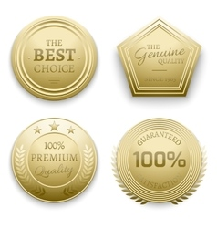 Polished gold metal badges vector