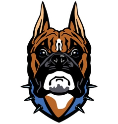 Boxer head front view vector