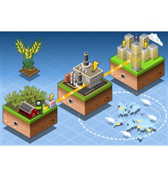 Isometric infographic biomass source renewable vector