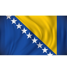 Flag of bosnia and herzegovina vector