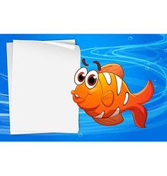 An orange fish beside an empty paper under the vector image