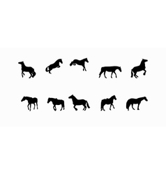 Horse runs hops gallops isolated on white vector