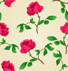 Seamless texture red rose stem vector