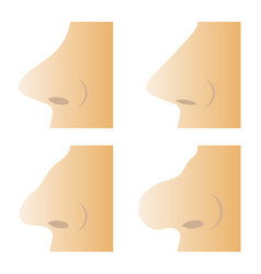set of different human nose vector image