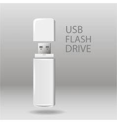 Universal flash drive vector