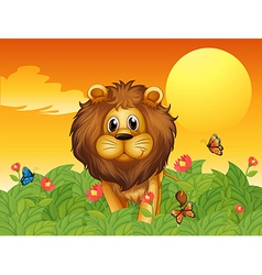 A lion and the butterflies vector image vector image