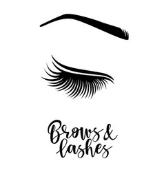 Brows and lashes vector