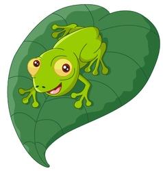 Cartoon frog sitting on a leaf vector