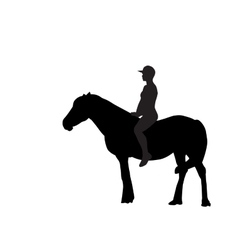 Silhouette of the Rider on the Horse vector image
