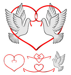 couple of pigeon vector image