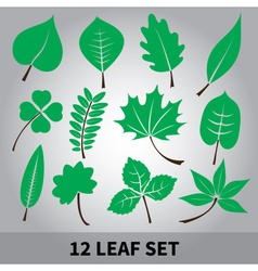 leaves icon set eps10 vector image vector image