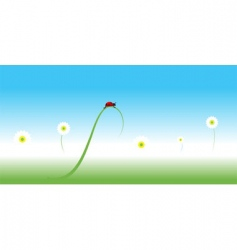 Ladybug spring background vector