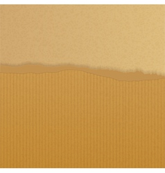 Torn brown paper background vector