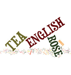 The english tea rose text background word cloud vector