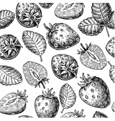 Strawberry seamless pattern drawing vector