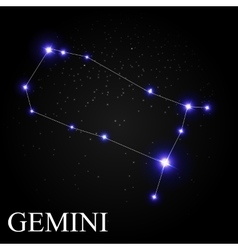 Gemini zodiac sign with beautiful bright stars on vector