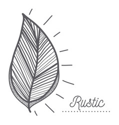 Rustic leaves decoration design vector