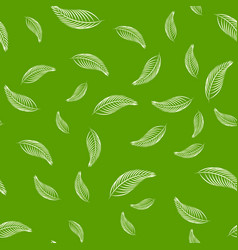 Seamless pattern leaf on green background vector
