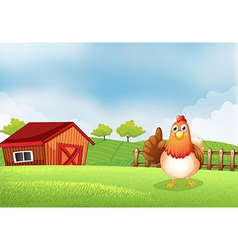 A hen at the farm vector