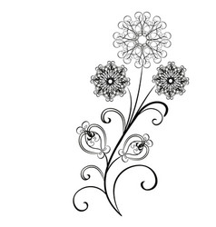 Flowers flourishes vector