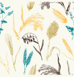 Pattern with hand drawn cereal crops vector