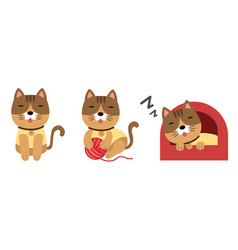 Cute cat set on white background vector