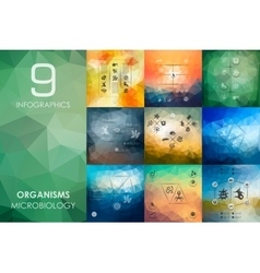 organisms infographic with unfocused background vector image vector image