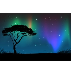 Silhouette field with aurora sky at night vector