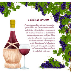 Wine jar and grape bunch background vector image vector image