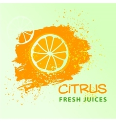 Premium background for fresh juice hand drawn vector