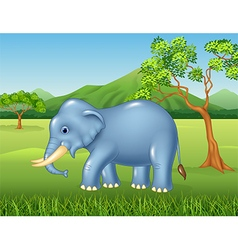 Cartoon african elephant in the jungle vector