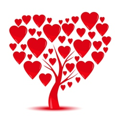 Heart tree with heart leaf isolated on White vector image