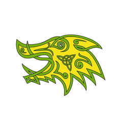 Boar head celtic knot vector