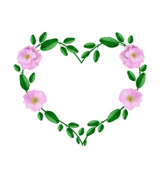 Pink damask roses in a heart shape vector