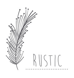 Rustic feathers decoration design vector