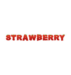 strawberry typography letters of ripe red berries vector image vector image
