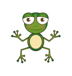 Colorful picture cartoon cute toad amphibian vector