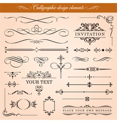 Calligraphic Design Elements vector image
