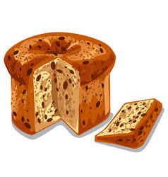 baked panettone cake vector image