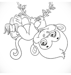 Cute baby monkey with banana hanging on the vine vector image vector image