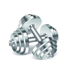 Metal realistic dumbbells vector