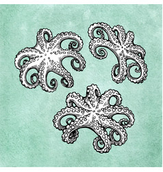 Octopus set on old paper vector