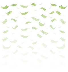finance concept dollar banknotes money rain vector image