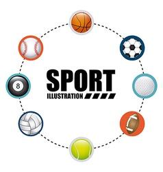 balls sport vector image