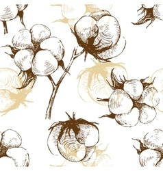 Hand drawn cotton plant seamless vector